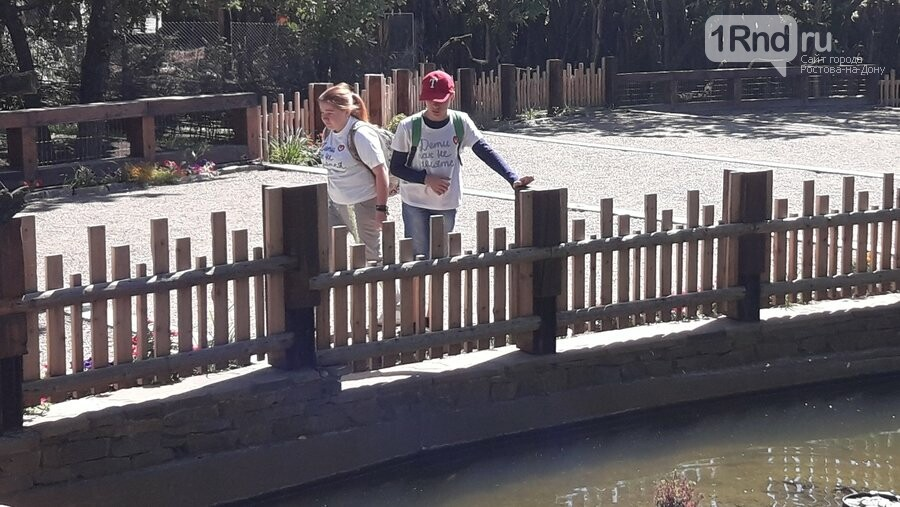 Благотворительный пикник для особенных детей прошел в Парке птиц «Малинки», фото-2