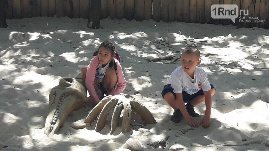 Благотворительный пикник для особенных детей прошел в Парке птиц «Малинки», фото-4