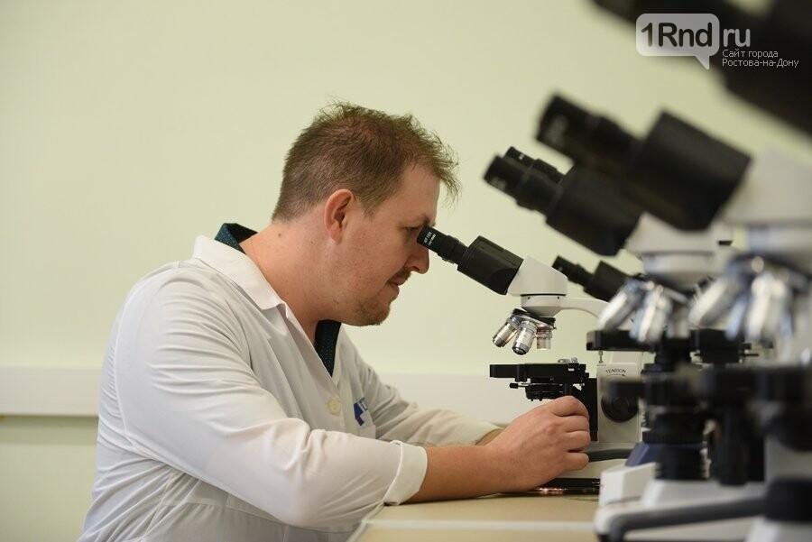 Ученый из ДГТУ обнаружил три новых вида многоножек, фото-2
