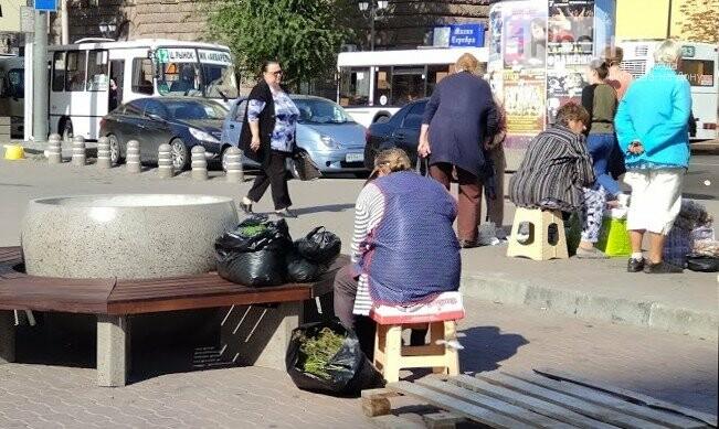 Те же кадки, только в профиль: как благоустраивают Соборную площадь Ростова, фото-5