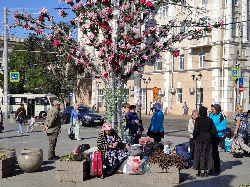Те же кадки, только в профиль: как благоустраивают Соборную площадь Ростова, фото-7
