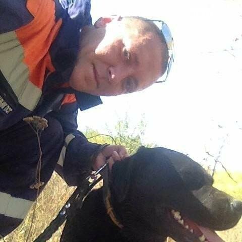 Лабрадор помог найти пропавшую в лесу под Ростовом пенсионерку, фото-1