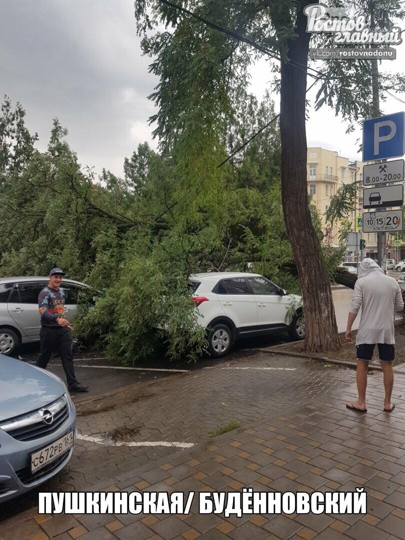 В Ростове ураганный ветер повалил десятки деревьев, фото-3