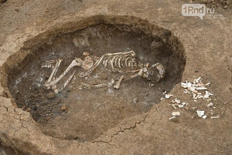 Донские археологи нашли древние захоронения в уникальном кургане под Азовом, фото-4
