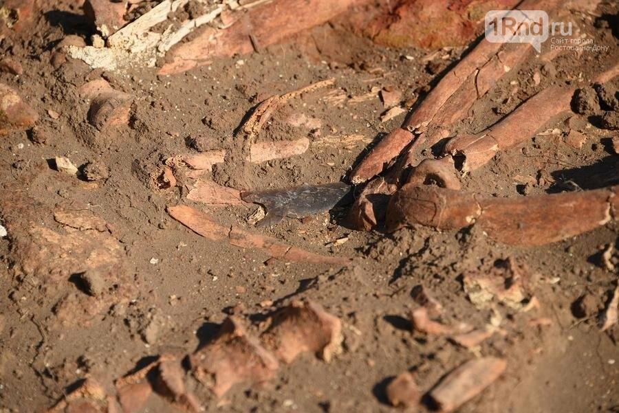 Донские археологи нашли древние захоронения в уникальном кургане под Азовом, фото-3