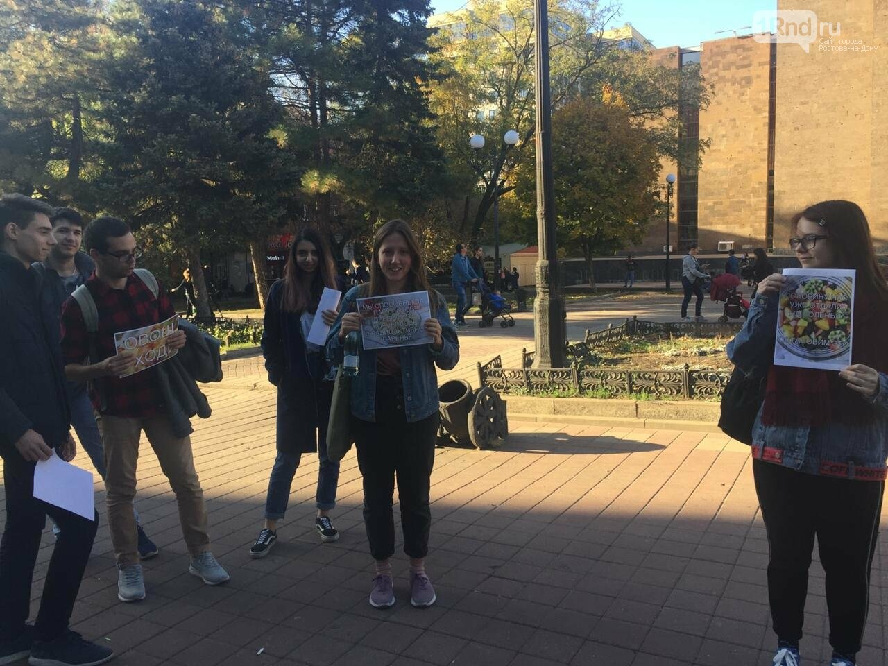 Ростовские студенты вышли на пикет в поддержку прав фруктового салата, фото-4