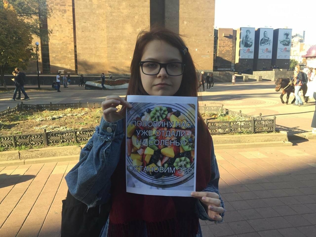 Ростовские студенты вышли на пикет в поддержку прав фруктового салата, фото-3