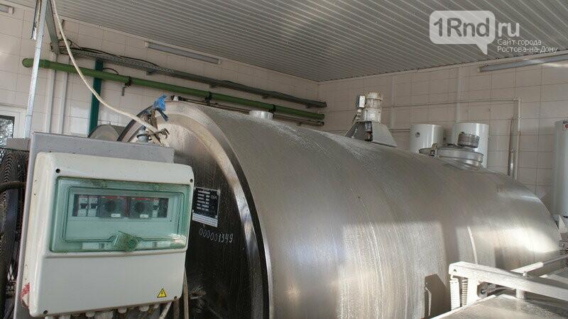 От коровы до прилавка: как в Ростовской области производят молоко, фото-4
