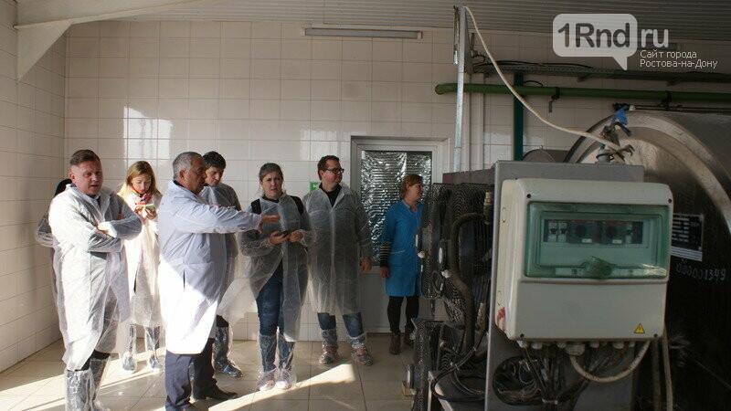От коровы до прилавка: как в Ростовской области производят молоко, фото-3