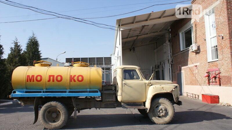 От коровы до прилавка: как в Ростовской области производят молоко, фото-26