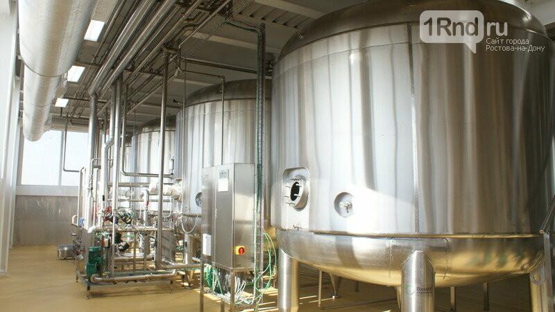 От коровы до прилавка: как в Ростовской области производят молоко, фото-19