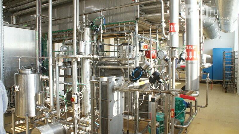 От коровы до прилавка: как в Ростовской области производят молоко, фото-18