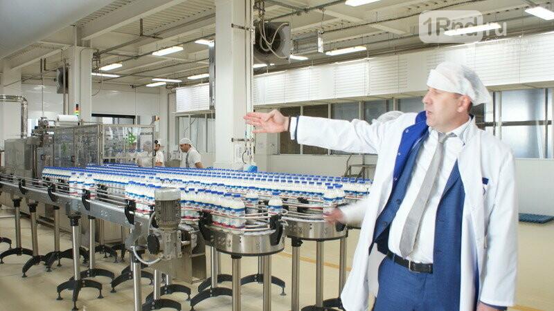 От коровы до прилавка: как в Ростовской области производят молоко, фото-23