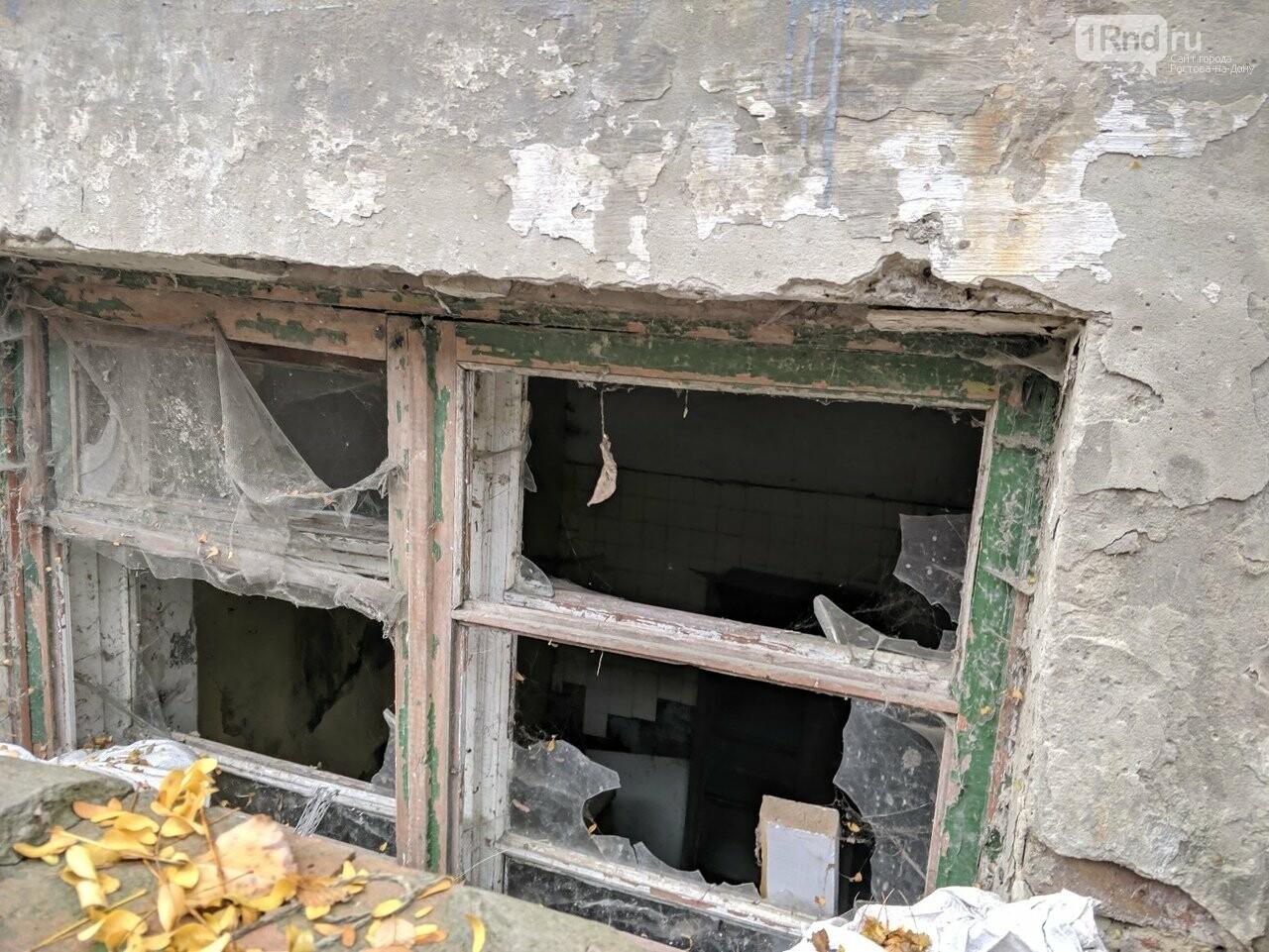 Путь к знаниям: как ростовские школьники добираются до своих школ, фото-10