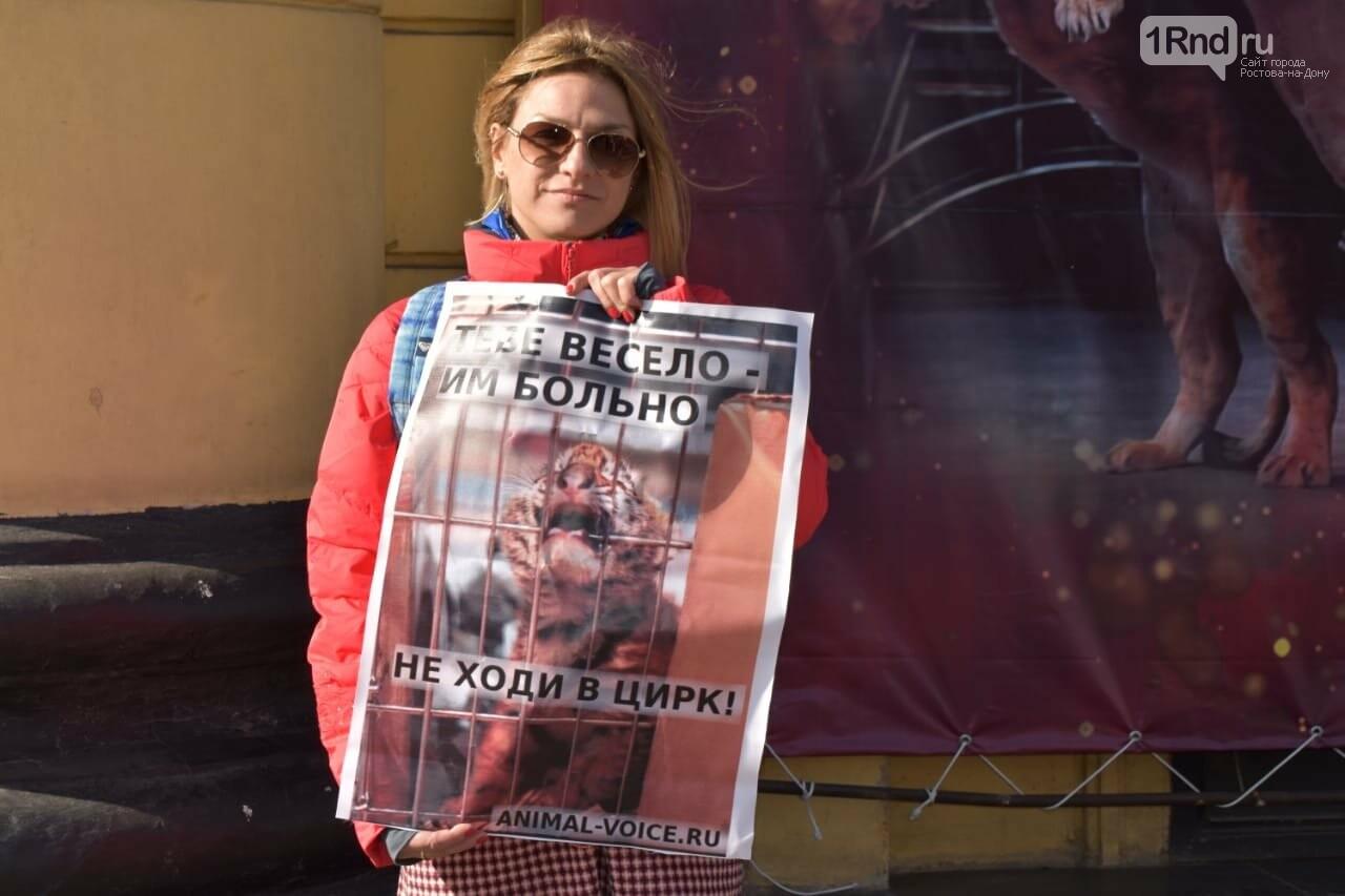У ростовского цирка прошел пикет против эксплуатации диких животных, фото-2