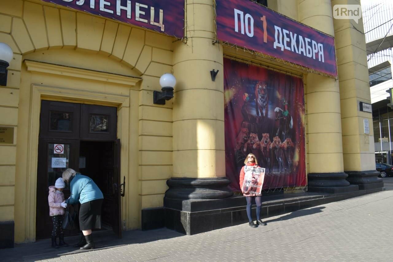 У ростовского цирка прошел пикет против эксплуатации диких животных, фото-1