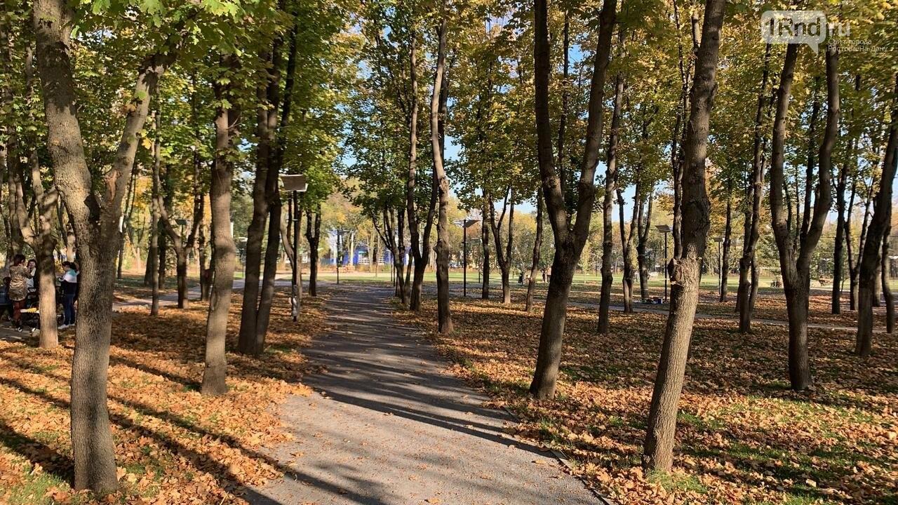 В Новочеркасске скоро откроют новый парк, фото-3