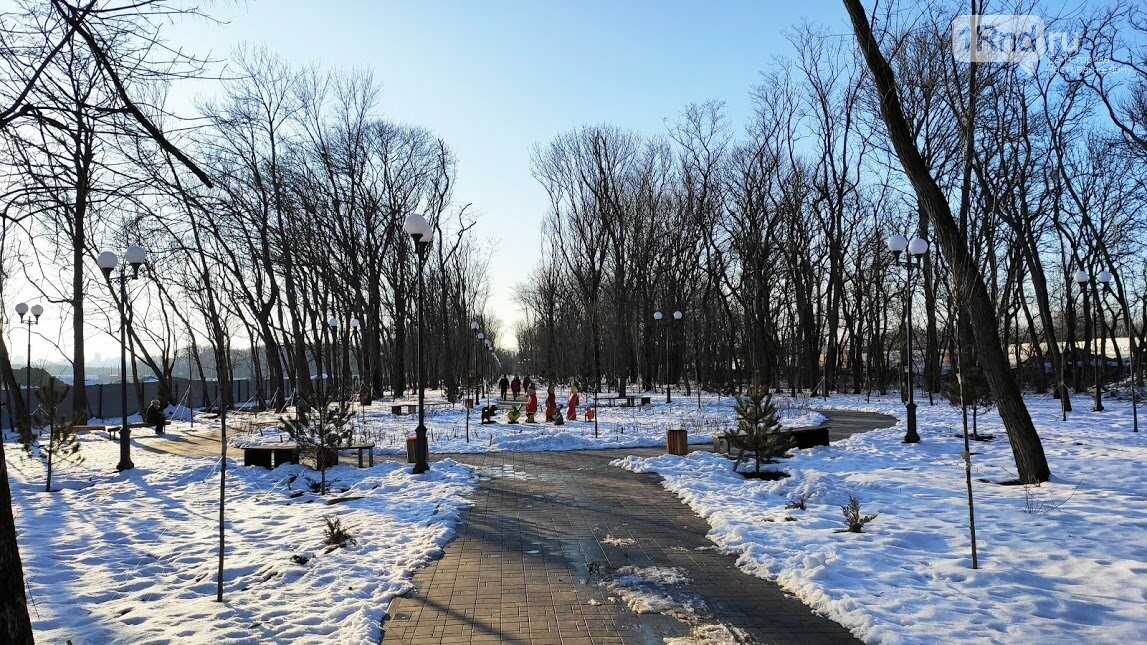 Ростовский парк Вересаева украсили очень странными фигурами, фото-4