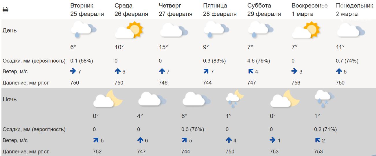 В Ростове резкое потепление до +15°С сменится мокрым снегом, фото-1