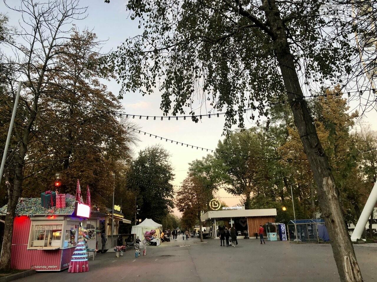 Концерт «Зверей», чёрная комедия и парки онлайн: афиша первомайских выходных в Ростове, фото-5