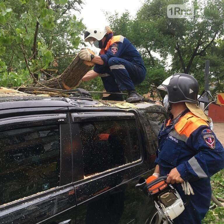 В Ростове упавшее дерево повредило четыре автомобиля, фото-1
