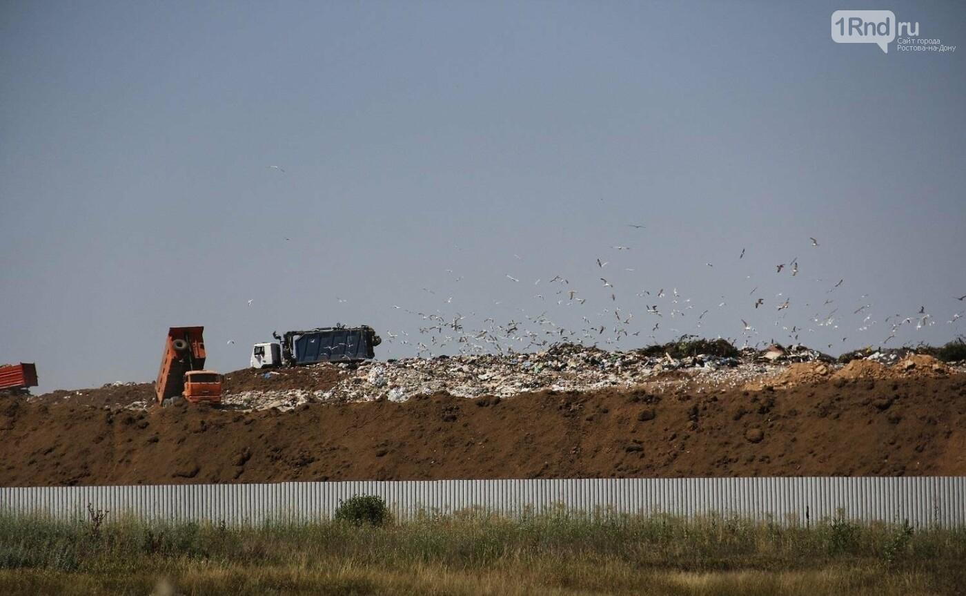 Активисты из Ростовской области ненадолго отсрочили строительство мусорного завода, фото-2