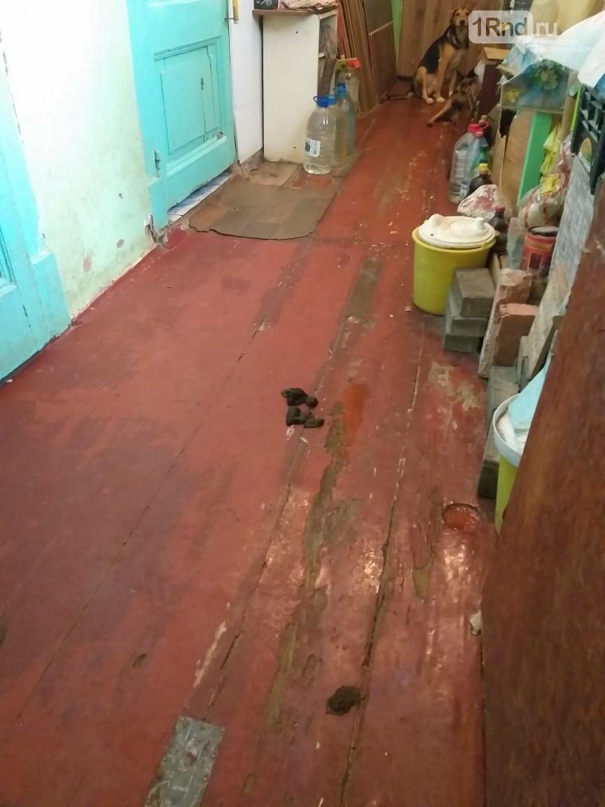Зверинец в квартире на Большой Садовой принадлежит администрации Ленинского района Ростова, фото-3