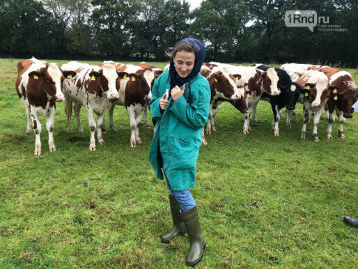 Отбирать коров в Германию Юлия поехала сама - Фото: Юлия Ломатченко