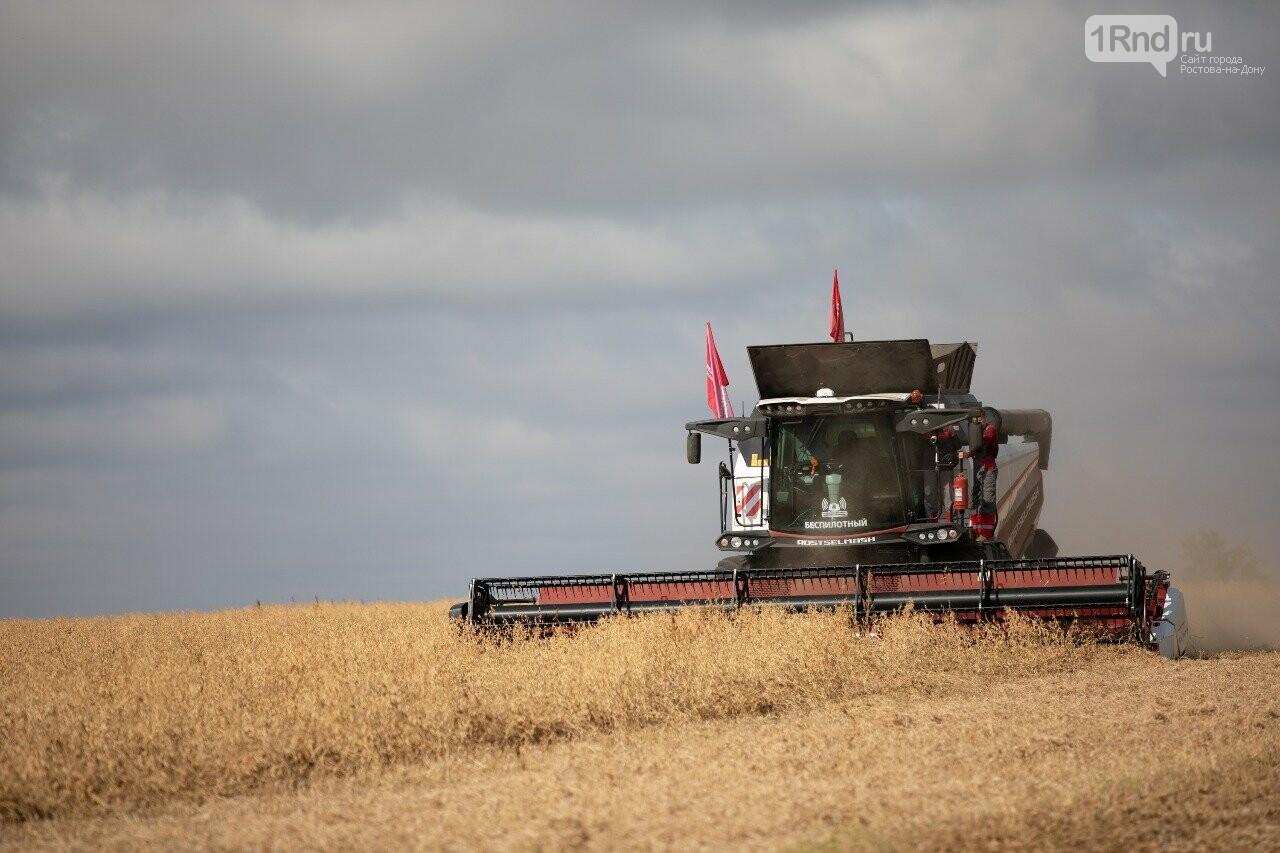 Беспилотный TORUM работает в поле, Фото: пресс-служба РСМ