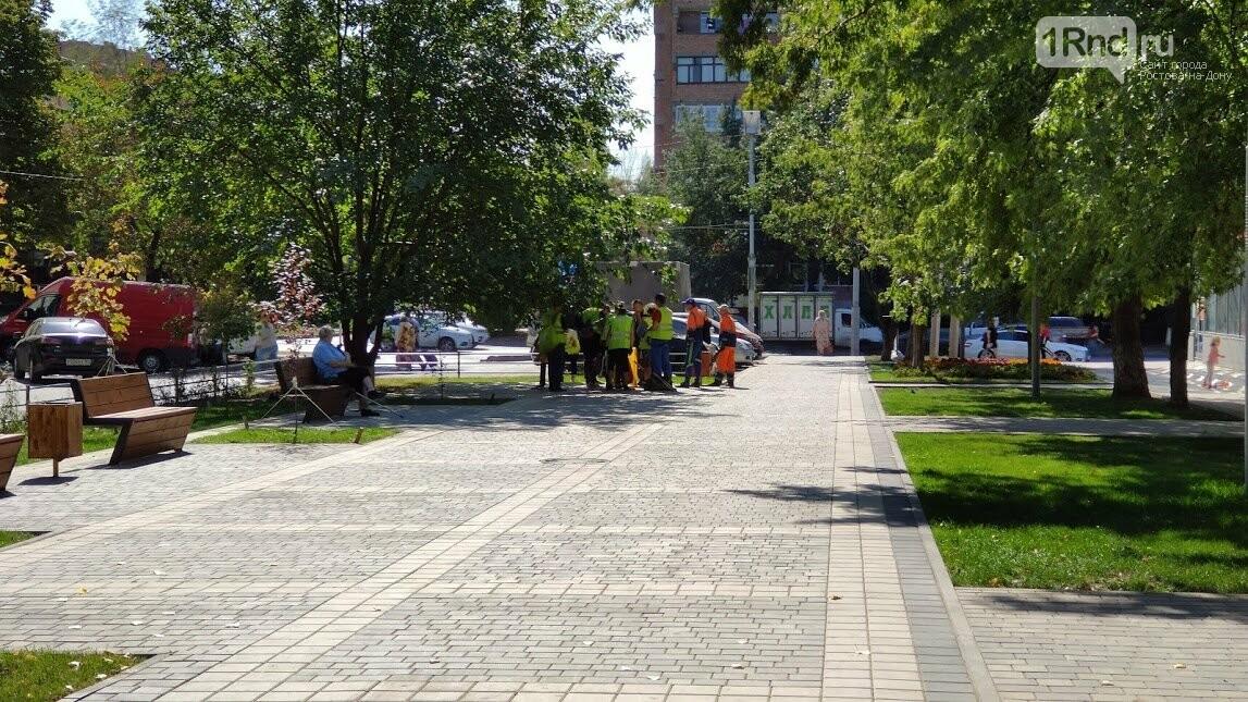 Общий вид пешеходной зоны на бульваре Новоселов