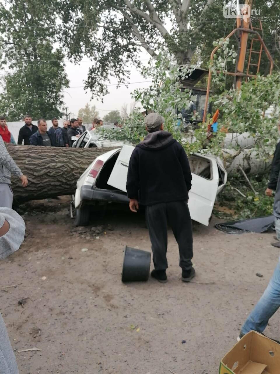 Дерево смяло машину с пассажирами в станице Багаевской