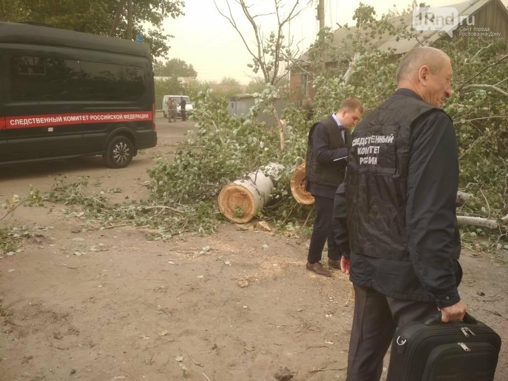 Место гибели двух человек от падения дерева в станице Багаевской, Фото - СУ СК по РО