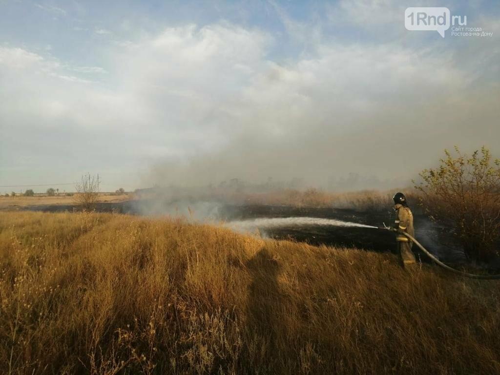 Ландшафтный пожар в РО, Фото: ГУ МЧС РФ по РО