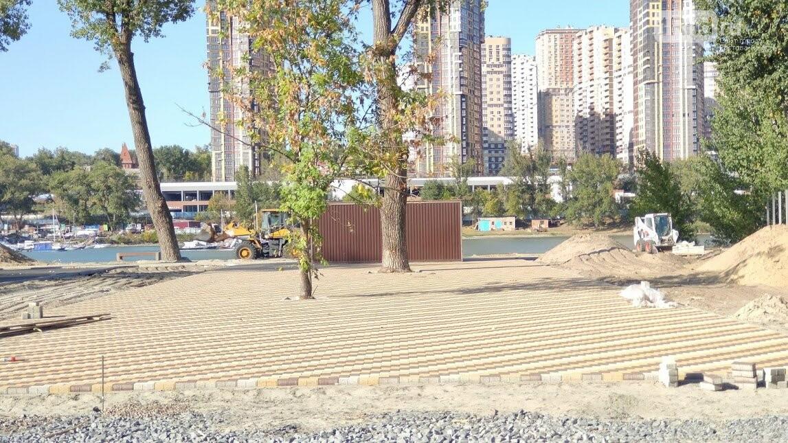 Полумертвое дерево как центр пешеходной зоны