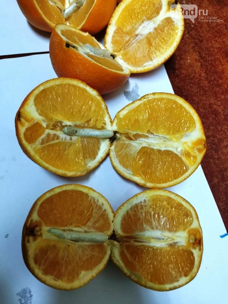 Апельсины с наркотиками, фото ГУФСИН РФ по РО