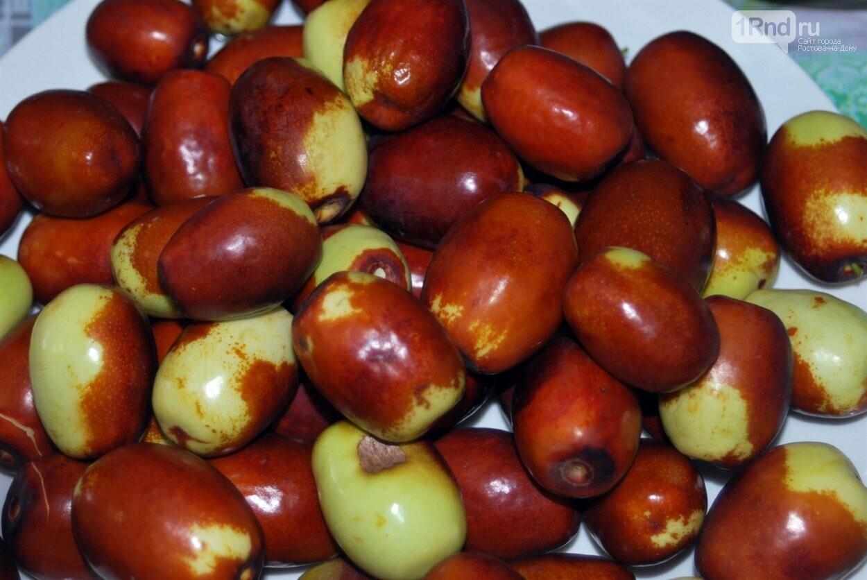 Так выглядят плоды зизифуса