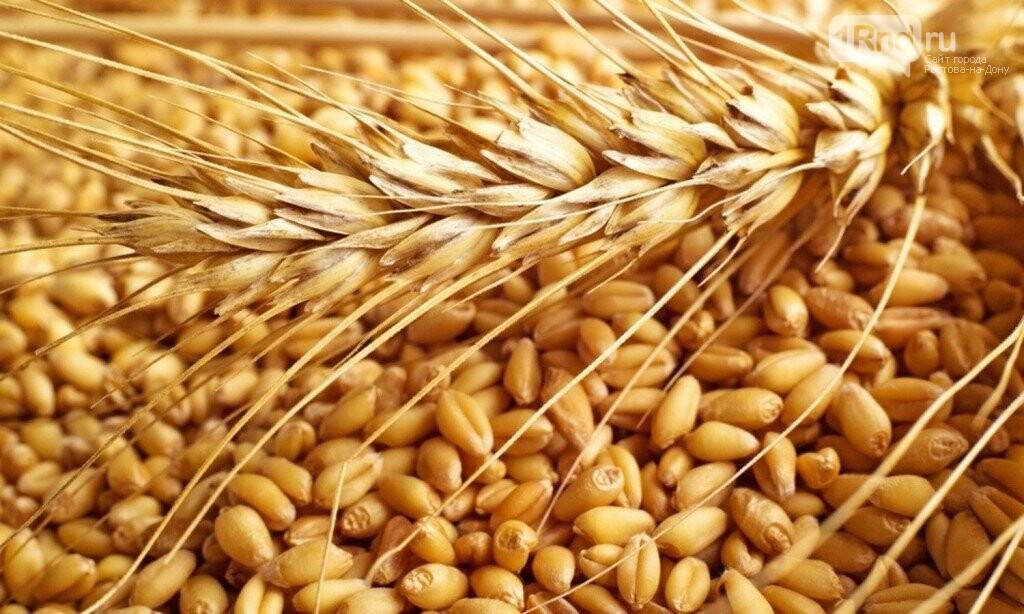Проблемы и перспективы АПК Юга обсудили аграрии и банкиры, фото-1