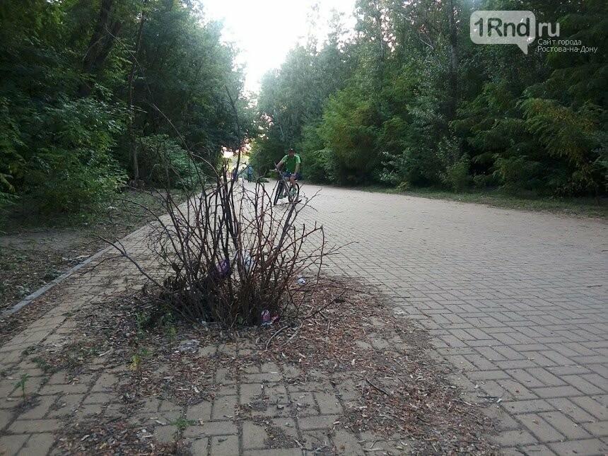 бОльшая часть парка остаётся заброшенной, Фото - архив 1rnd.ru