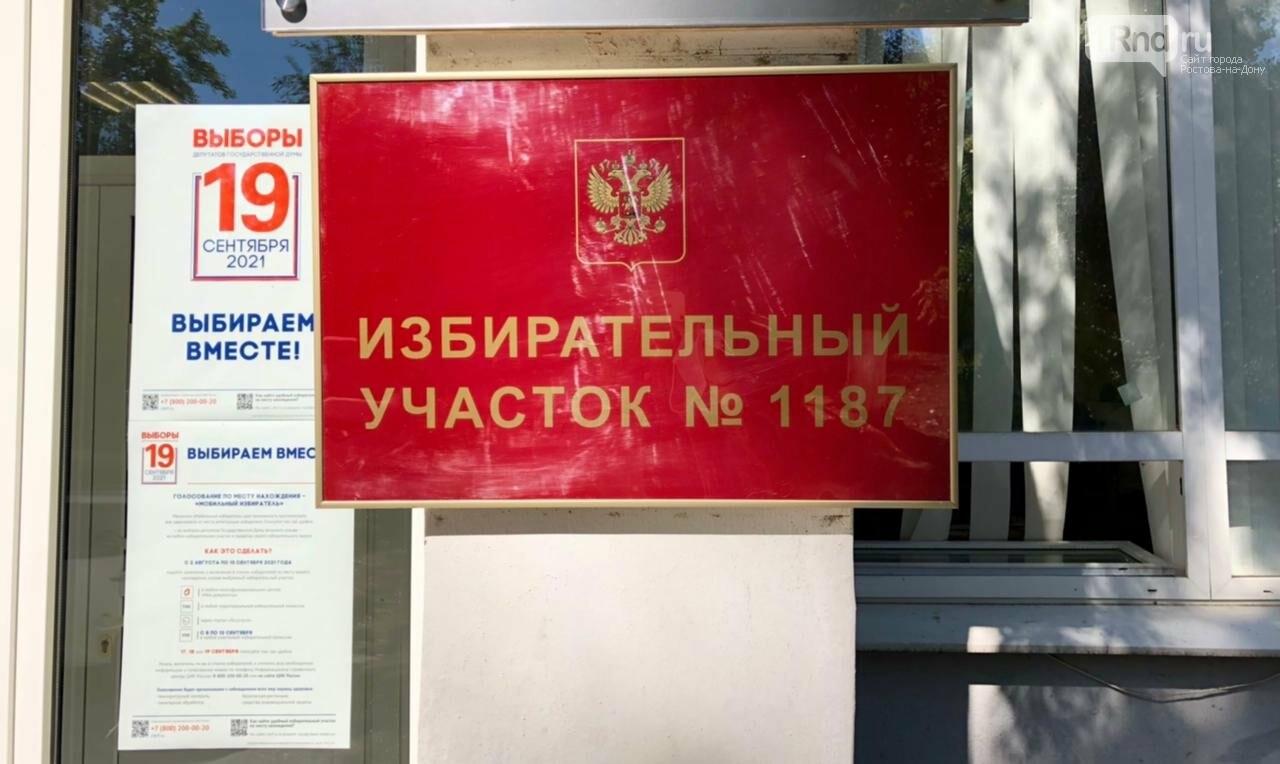 Выборы в Ростовской области