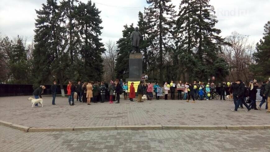 Зоозащитники вцентре Ростове собирали подписи и добивались  ужесточить законодательство