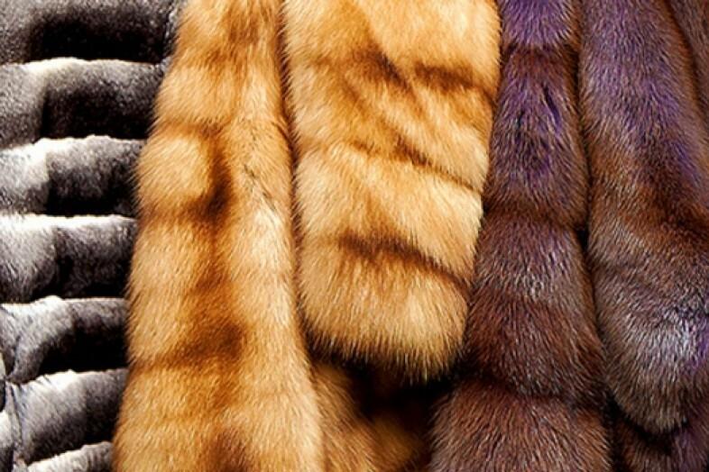 Шубы прочипируют: изделия из натурального меха будут маркировать - 1rnd.ru
