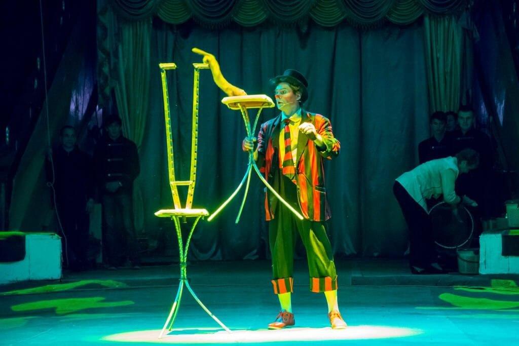 Ростовские ветеринары спасли циркового артиста, носуху Рики, фото-1