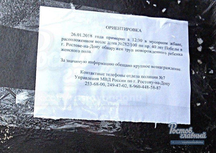 Вознаграждение пообещали ростовчанам за информацию о женщине, выбросившей младенца в мусор, фото-1