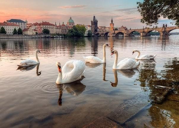 Где отдохнуть лето-осень 2018 - ростовские турагентства рекомендуют, фото-6
