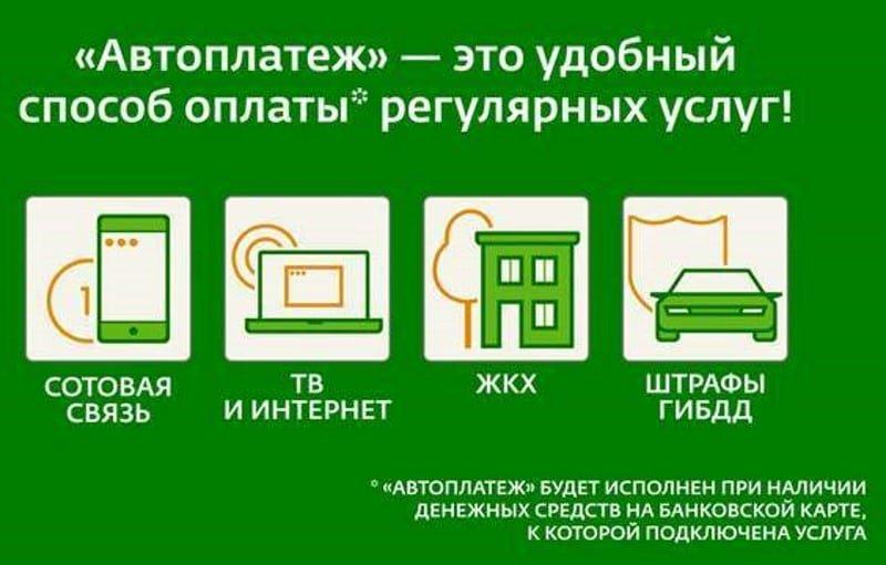 Наибольшее количество автоплатежей по услугам ЖКХ пришлось на Ростовскую область - Сбербанк, фото-1