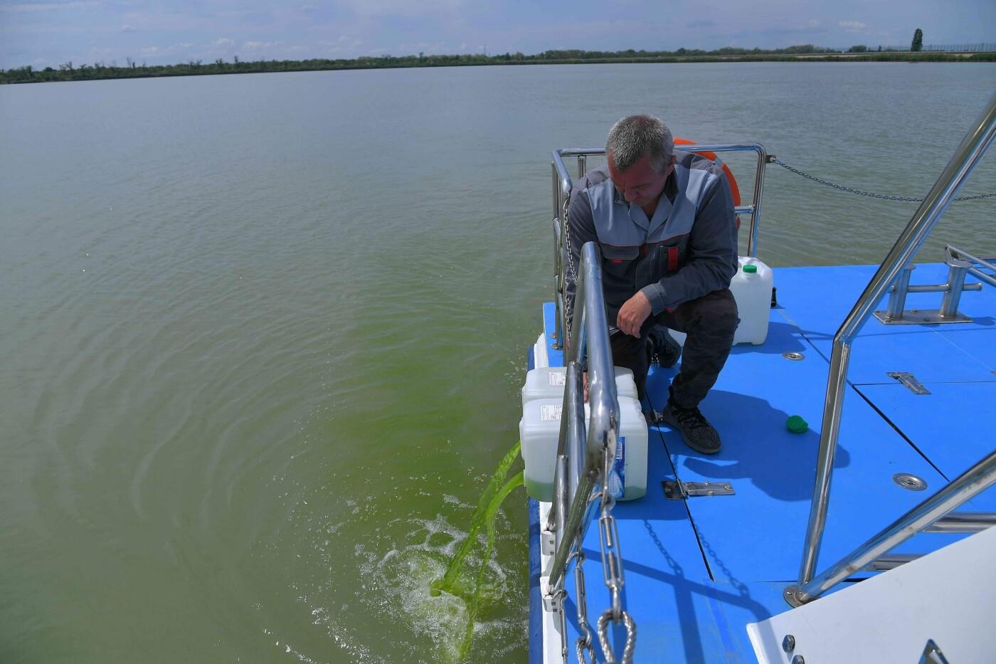 Специалисты АЭС выпускают суспензию с хлореллой в Дон