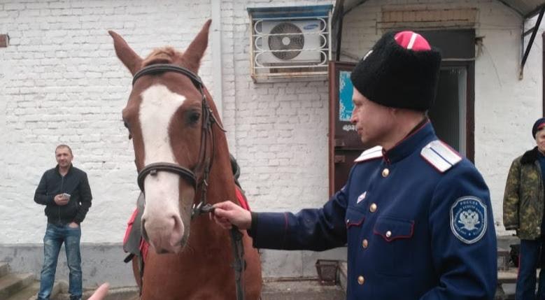 В Ростове-на-Дону казак пришел на избирательный участок с конем - видео